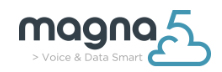 Magna5: Managed IT Services, Voice and Security Solutions